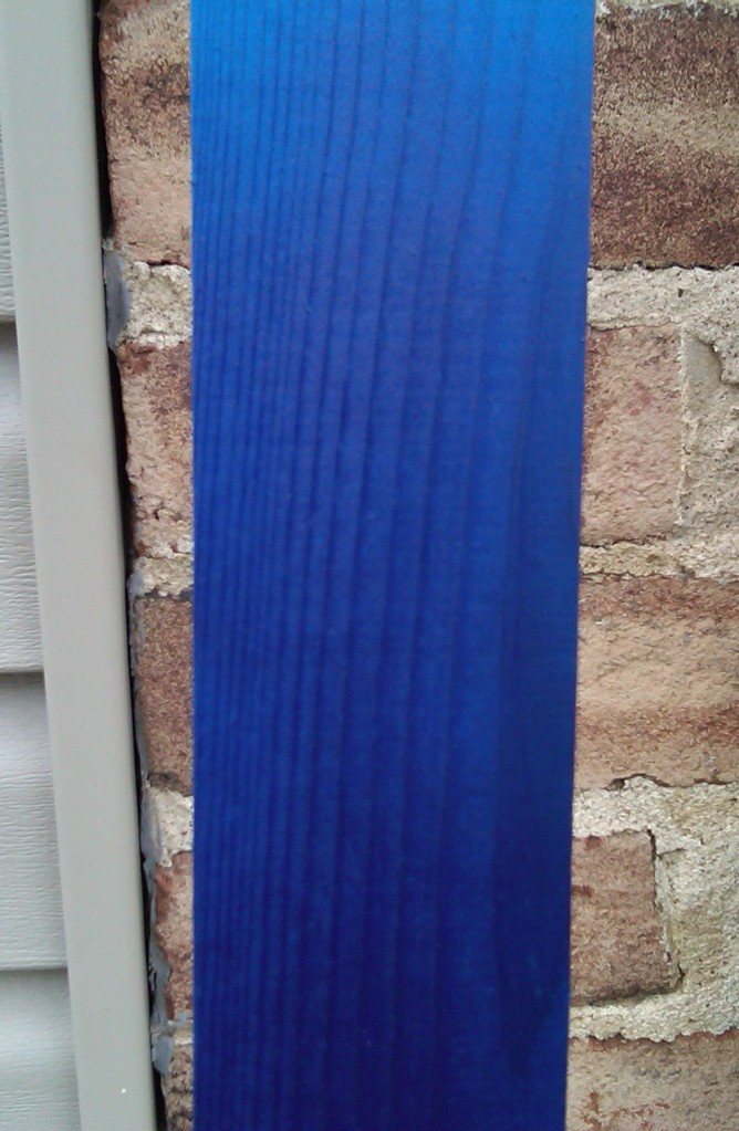 2010_NST_Blue.jpg