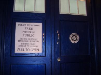 TARDIS Trim.jpg