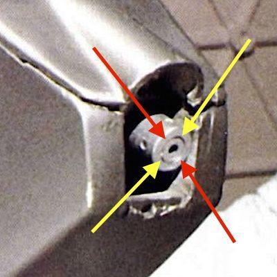 K9-NoseLaser.jpg