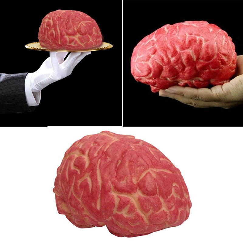 brain 01.jpg
