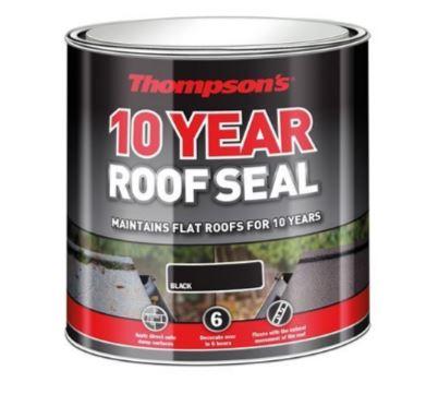 Roof Paint.JPG